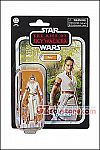 Hasbro - Star Wars The Vintage Collection 2019 Wave 1 - Rey
